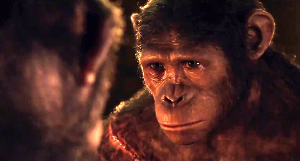Dawn-Of-The-Planet-Of-The-Apes-7